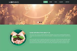 Morning – agriculture Theme