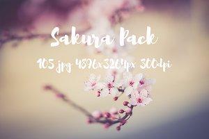 Sakura Pack