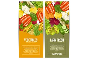 Organic vegetable farming flyers set