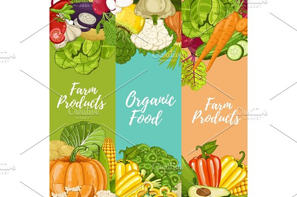 Organic Farm Food Flyers Set
