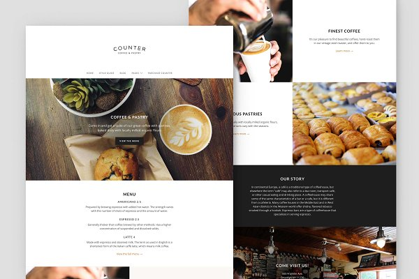 WordPress Business Themes: ThemePatio - Counter – Business WordPress Theme