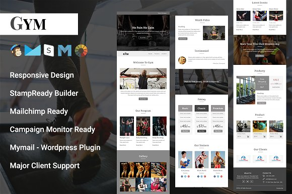 Gym - Responsive Email Template ~ Email Templates ~ Creative Market