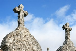 crosses in cemetery