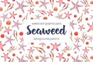 Seaweed watercolor collection