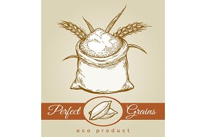 Eco grains product sketch illustration