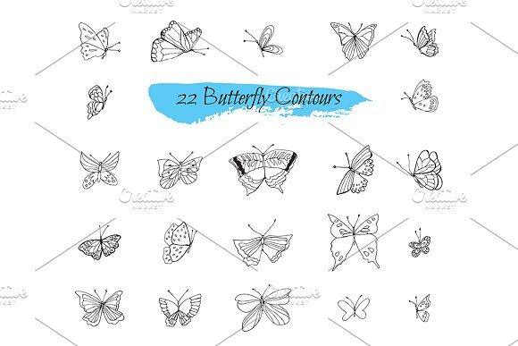 Ўн240 Collection Sketches Butterflies