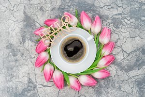 Coffee tulip flowers Spring