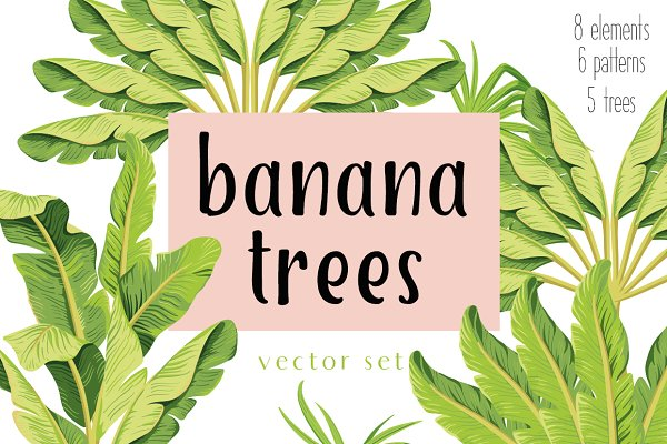Banana trees. Vector set