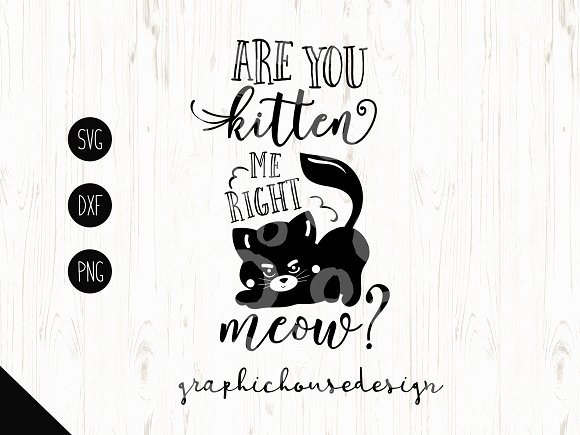 Are You Kitten Me Cutting File