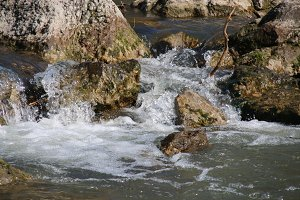 fast mountain river, pure water