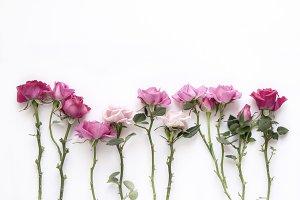 Natural roses
