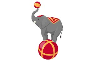 Circus elephant on ball isolated on white