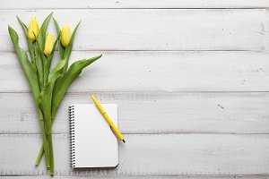 Yellow tulips on white wooden boards