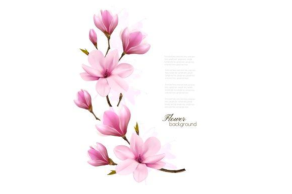 Blossom Branch Of Pink Magnolia