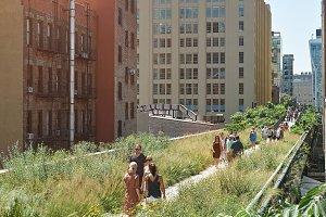 Green highline park