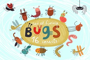 16 funny and cute bugs. Vector set