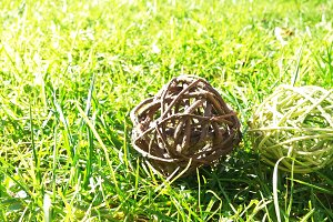 Two wooden balls in the grass