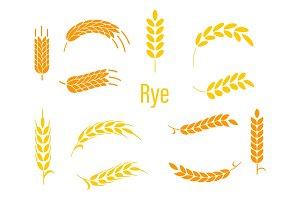 Ears of rye.