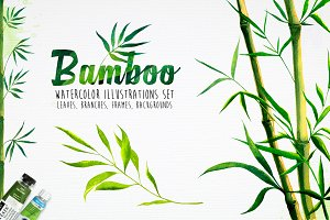 Bamboo. Watercolor illustrations.