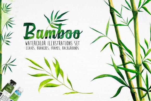 Bamboo Watercolor Illustrations