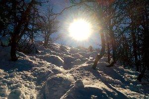 winter sports at sun