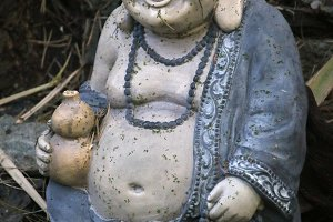 Buddha Symbol Of Health.