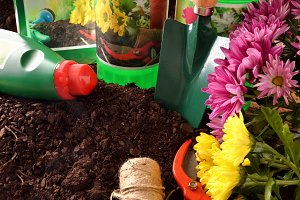 Gardening products on soil elevated