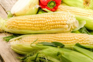 Fresh corn and ingredients
