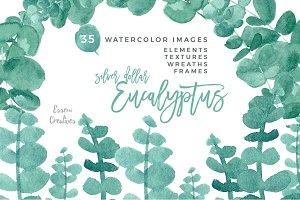 Eucalyptus Clipart Watercolor Leaves
