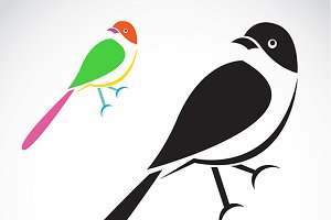 Vector of a bird icon.