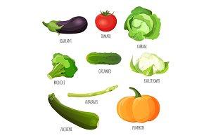 Vegetables set. Eggplant, tomato, cabbage, broccoli, cucumber, cauliflower, pumpkin, zucchini