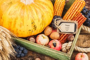 Thanksgiving day: Tray of different autumn vegetables