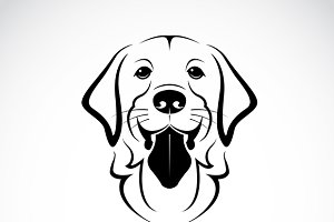 Vector of a dog golden retriever.