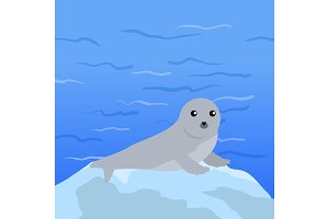Earless seal Vector Illustration in Flat Design