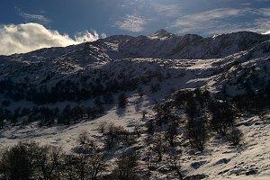 Snow landscape, square format