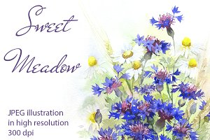 SALE! Watercolor meadow flowers