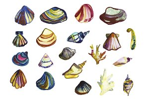 Seashells and corals watercolor set.