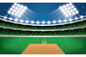 Cricket Stadium with Neon Lights.
