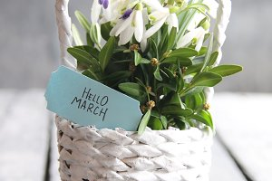 Hello march tag and Bouquet of snowdrops in a wicker basket