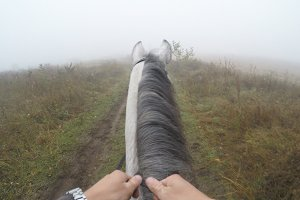 First person view of riding a horse
