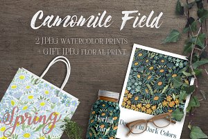 SALE! CAMOMILE FIELD watercolor set