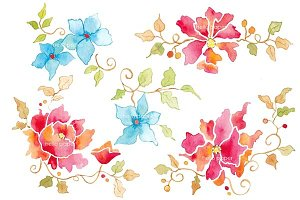 natural flowers watercolor