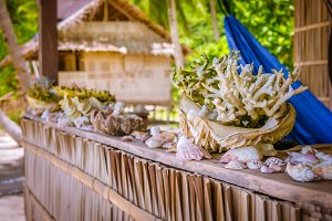 Bamboo Hut wih Sea Mussels and Corrals on Parapet of an Homestay on Gam Island, West Papuan, Raja Ampat, Indonesia