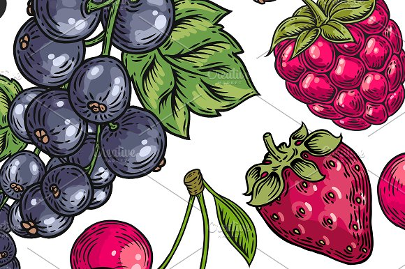 Berry hand drawn set, patterns in Illustrations - product preview 1