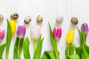 Easter banner with beautiful spring tulips and quail eggs