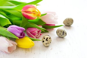 Beautiful spring tulips and quail eggs closeup. Easter concept