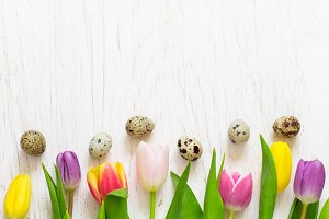 Beautiful tulips and quail eggs on a white background. Easter