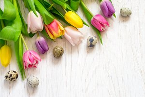 Beautiful tulips and quail eggs on a white background. Easter.