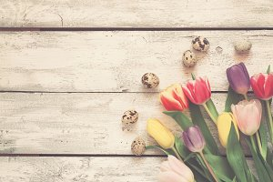 White wooden Easter background with tulips and eggs, Toned