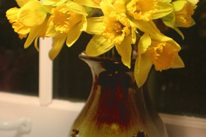 Daffodils in Vase on Sill